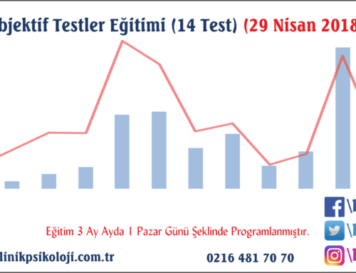 Objektif Testler Eğitimi (14 Test) (29 Nisan 2018)