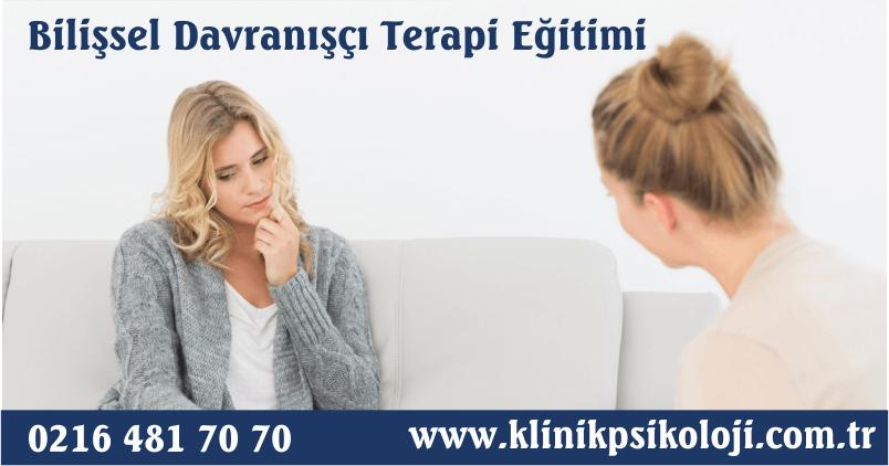 Bilişsel Davranışçı Terapi Eğitimi (Şubat 2018)