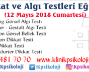 frostig-testi-mayis18