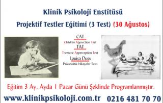 projektif_testler_agus_thumb