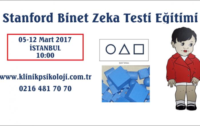 st-binet-egitimi-mart17