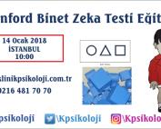 st-binet-egitimi-ocak-2018