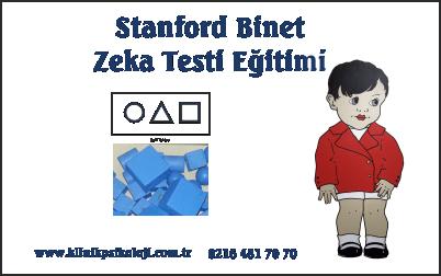 Stanford Binet Zeka Testi Egitimi