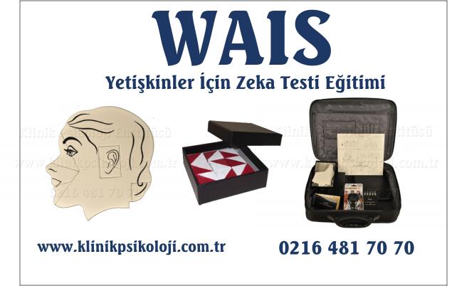 wais-2016-genel