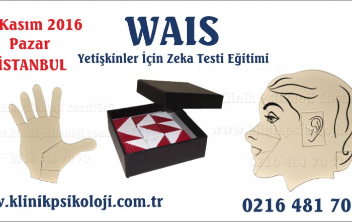 wais-2016-kasim