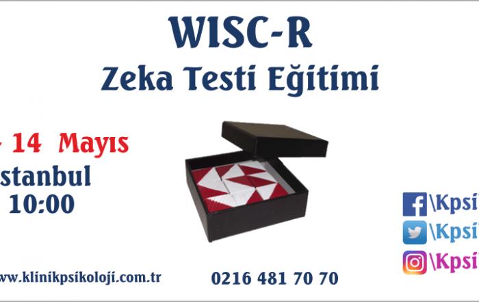wisc-r-egitimi-2017-mayis