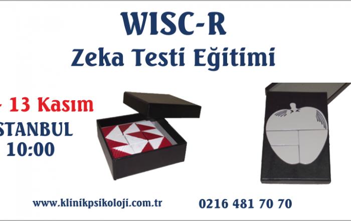 wisc-r-egitimi