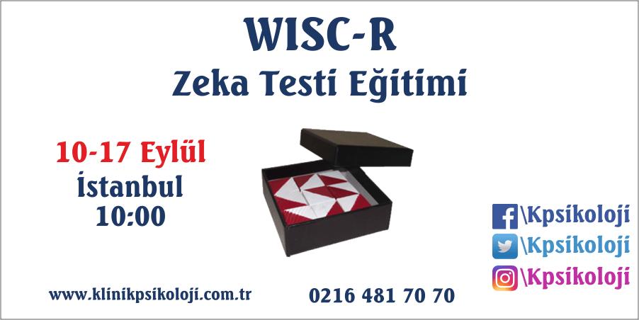 WISC-R Zeka Testi Eğitimi (10-17 Eylül 2017)