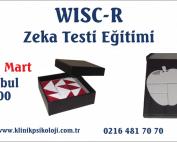 wisc-r-egitimi-mart17