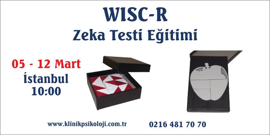 WISC-R Zeka Testi Eğitimi (05-12 Mart 2017)