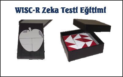 WISC-R Zeka Testi Egitimi