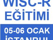 wisc-r_ocak