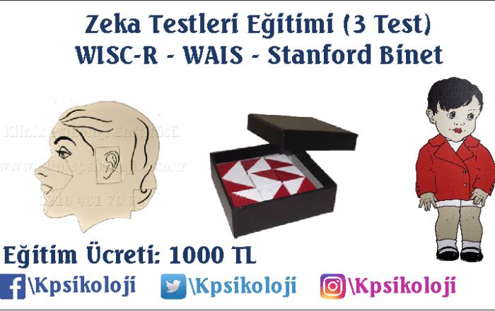 zeka-testleri-egitimi-nisan-2018