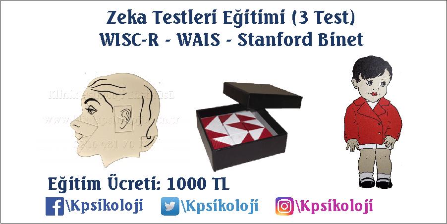 Zeka Testleri Eğitimi (WISC-R WAIS ST. Binet)