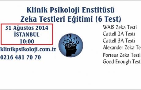 zeka_testleri_agustos